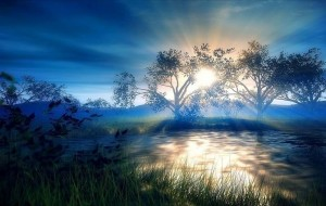 sunlight-plays-with-nature-beauty